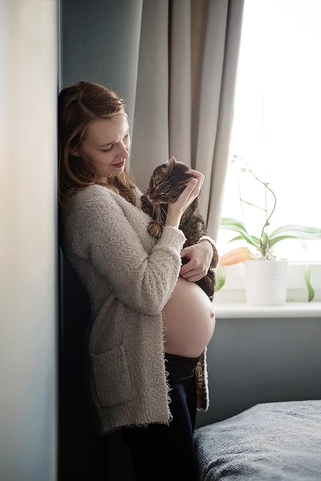 sesja ciążowa gdańsk, sesja brzuszkowa gdańsk, naturaln sesja ciążowa, sesja ciążowa z kotem, mrugała studio